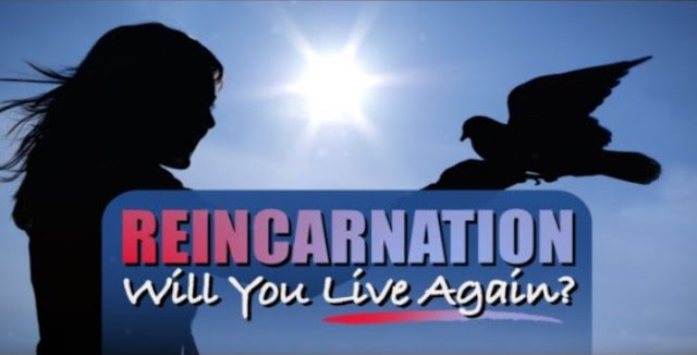 Reincarnation: Will You Live Again?